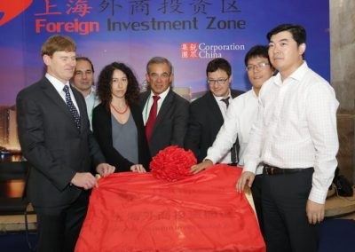 shanghai_foregn_investment_zone_14